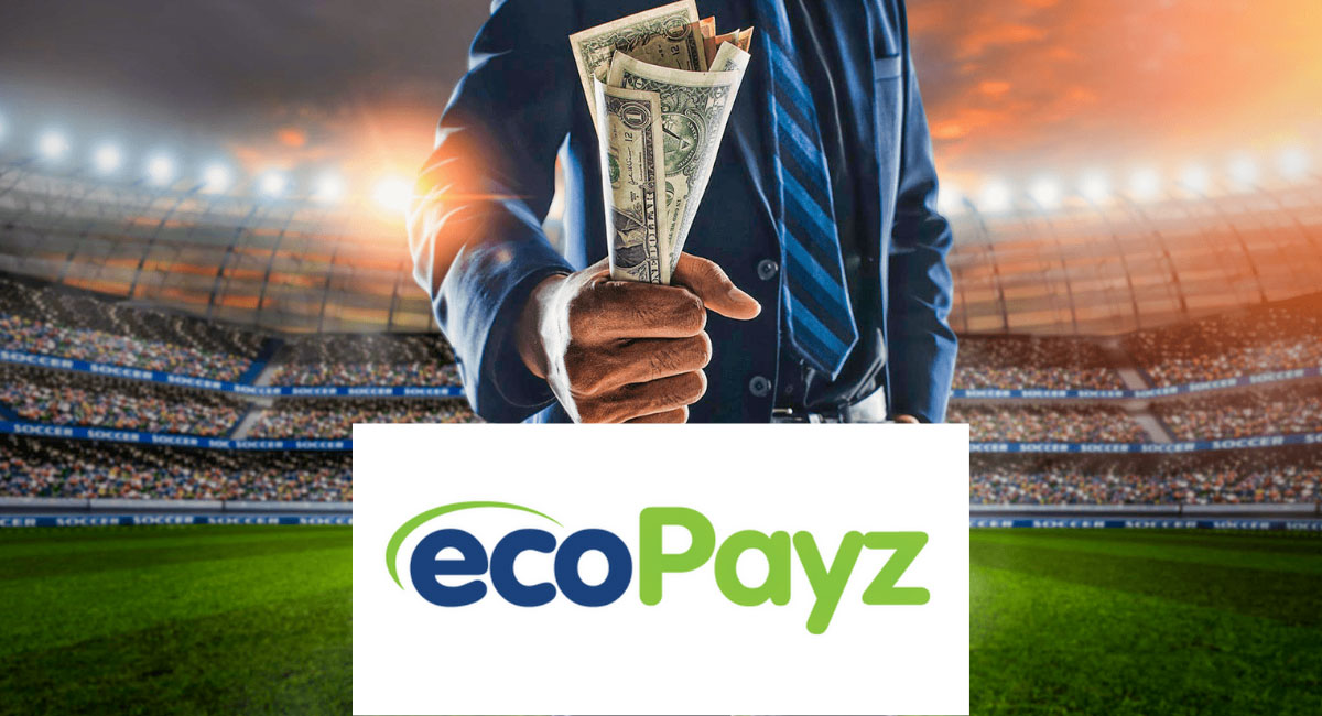 Ecopayz payment system